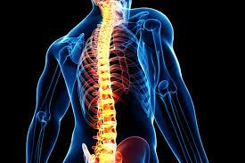 рак на гръбначния стълб симптоми