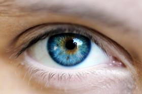 Подобряване на зрението с билки