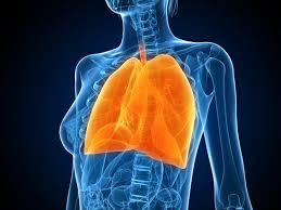 болести на дихателната система